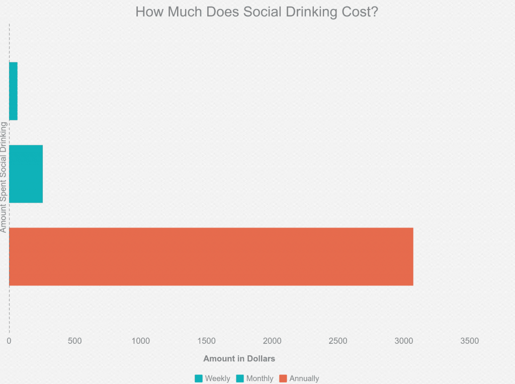 How Much Does Social Drinking Cost?